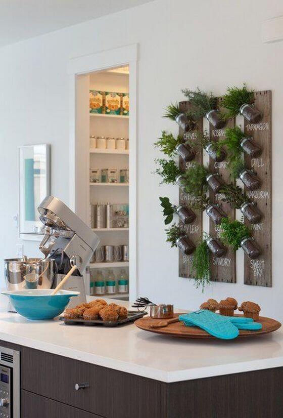 decorando la cocina con plantas